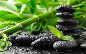 15186-bamboo-and-zen-stones-1920x1200-photography-wallpaper